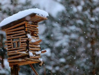 birdhouse_snow_winter-hd_widescreen_wallpaper_1920x1080