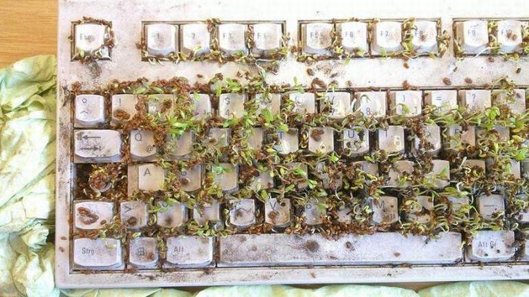karta-dlya-chistki-klaviatury