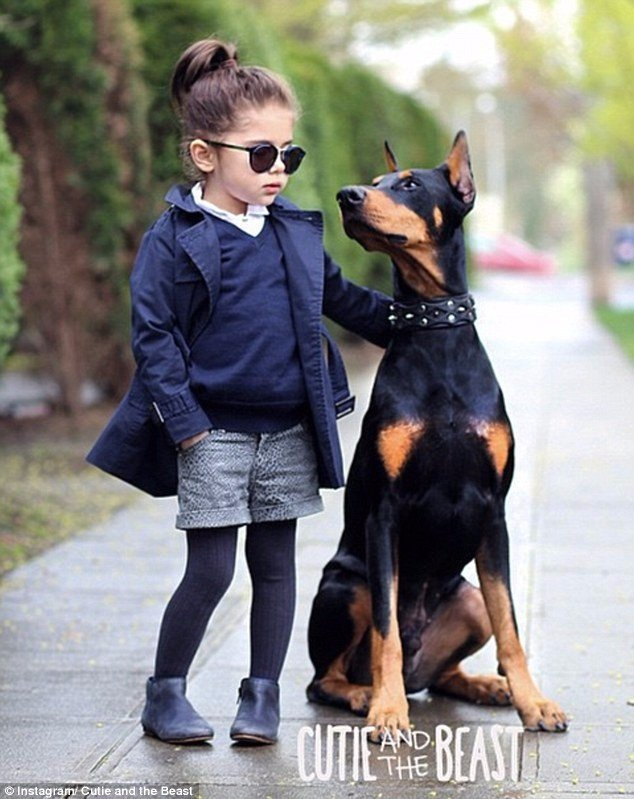 l5gpuwokdog