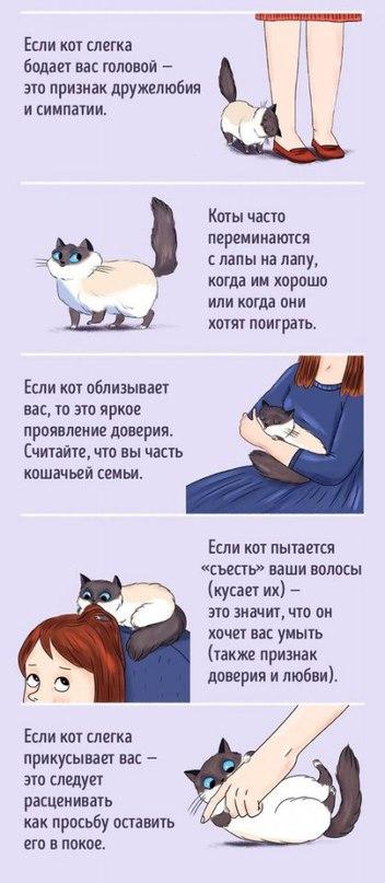 _9iucekv1g8