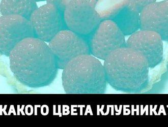 illusia_001_klubnika-1