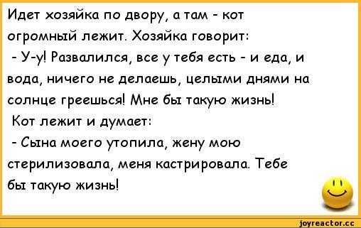 Анекдоты Про Котова