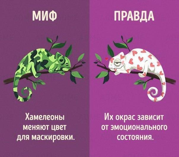 qhdbedzbgiq