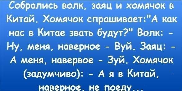 u_ea994c956f6b27f4c5de31be21964e7a_800