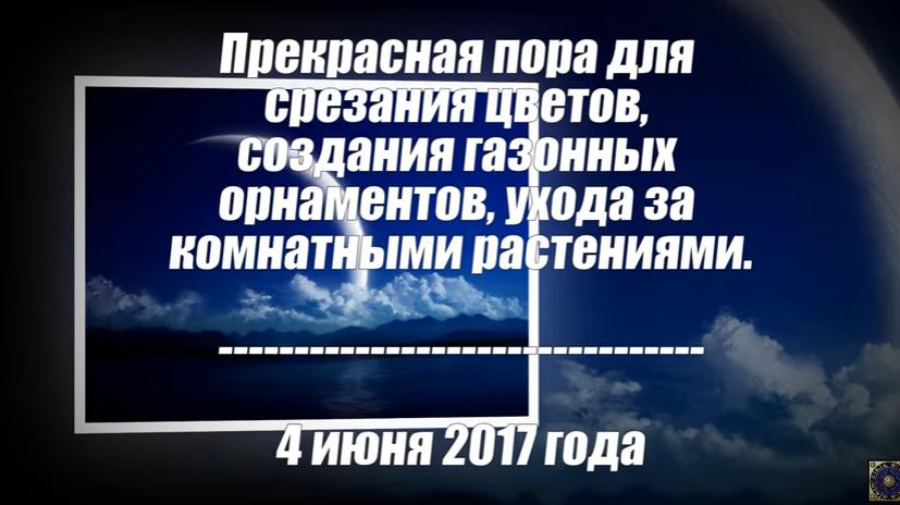 2017-06-08_22-31-55