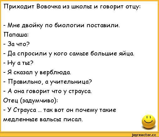 anekdoty-anekdoty-pro-vovochku-328593