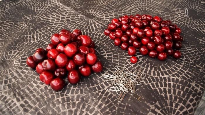 pit-cherries-novate2