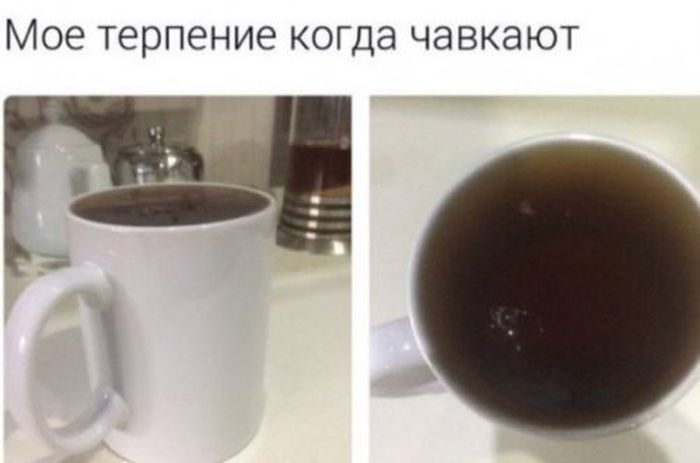 foto_prikoli_26