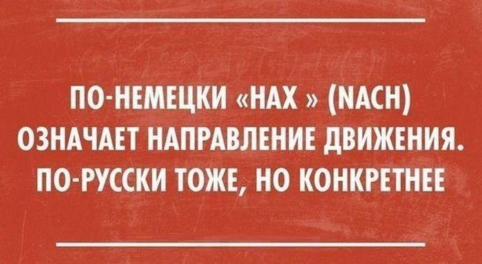 prikoli_03