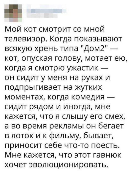 soc_seti_05