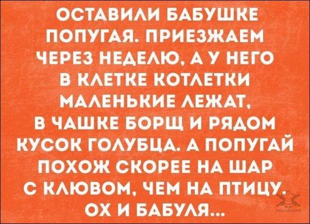 1500844488_atkritka-15072017-001