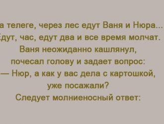 1502970919_-f4o2omhbskvsyvm