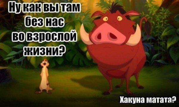 gotovimshk23