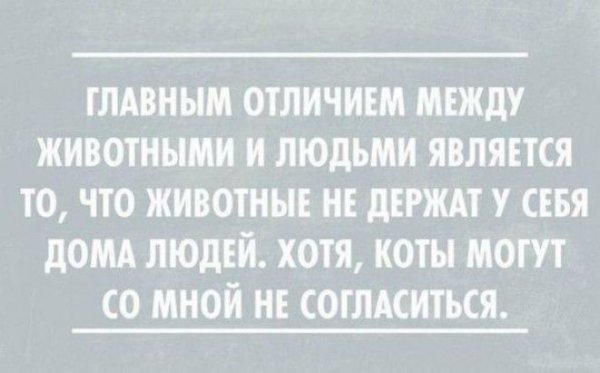 otkrsarkazm23