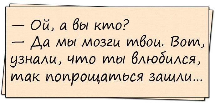 b_exh_z6vke